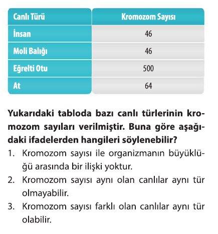 dna-ve-genetik-kod-test-2-1-1