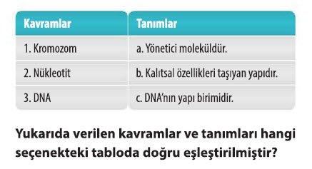 dna-ve-genetik-kod-test-2-1-6
