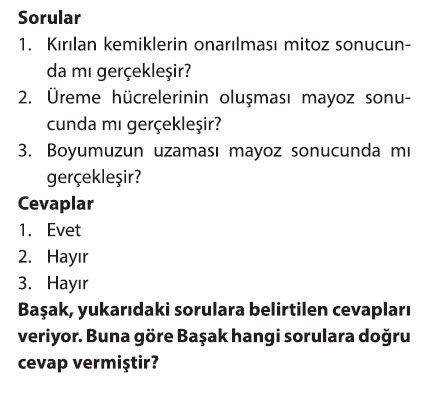 mayoz-2-7