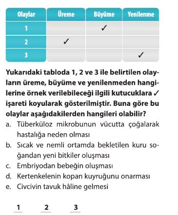 mitoz-1-10