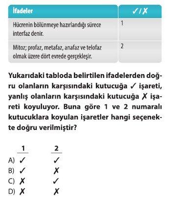 mitoz-1-9
